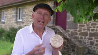 Will Studd Selected Le Conquerant Normandy Camembert