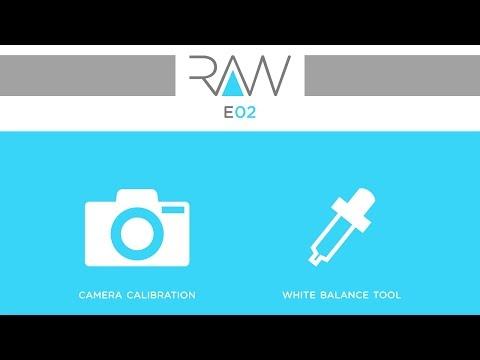 Camera RAW E02- Camera profile & White balance