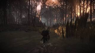 The Witcher 3 mod | GulluTube