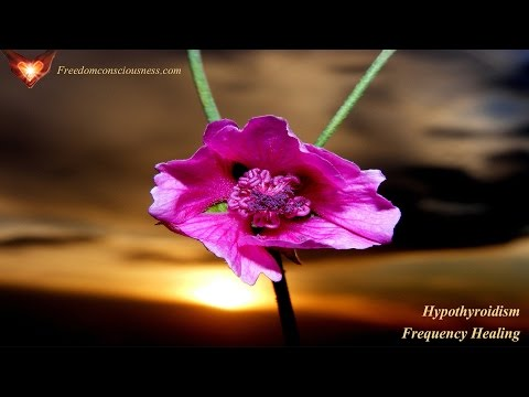 Hypothyroidism Frequency Healing - Increase Thyroid Function Naturally