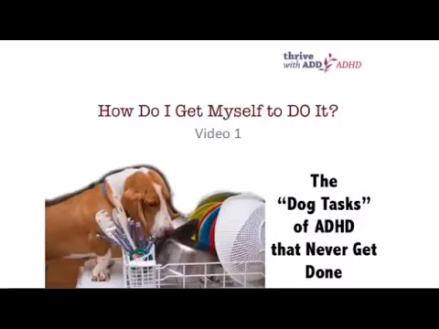 THE DOG TASKS OF ADHD