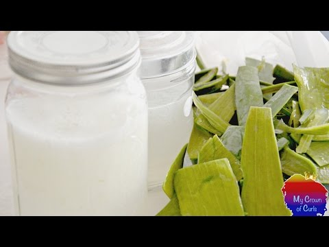 HOW TO MAKE ALOE VERA GEL AND ALOE VERA JUICE FROM ALOE VERA LEAF at home || MY CROWN OF CURLS
