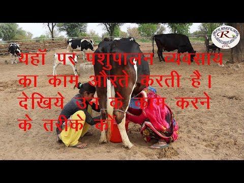 जाने इन औरतों के पशु पालन व्यवसाय को, know the animal husbandry business of this womans,