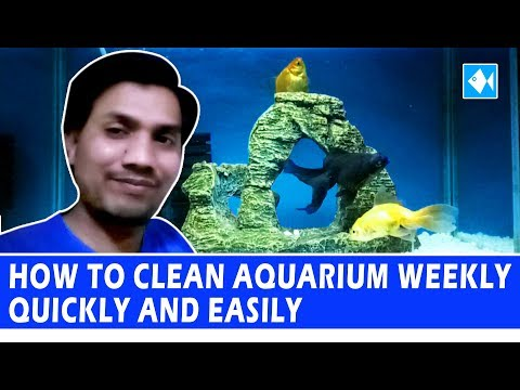 How to clean aquarium quickly easily, Goldfish fish tank cleaning, 30% water change weekly in Hindi