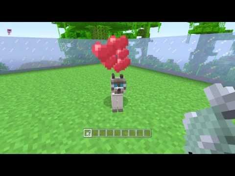 How To Tame An Ocelot In Minecraft XBOX 360 || TU12 ||