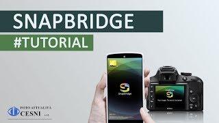 Nikon: SnapBridge Version 2 0 | Connecting with iOS Devices