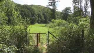 Balade dans la vallée de l'Hermeton De Soulme à Vodelée