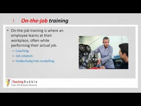 VCE Business Management -  Training