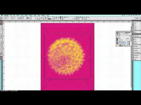 How to create a one color image using Indesign