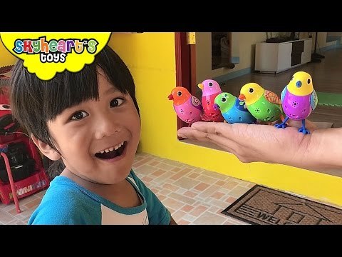 Searching for BIRDS in our house - Little Live Pets Bird toys for kids singing and tweeting