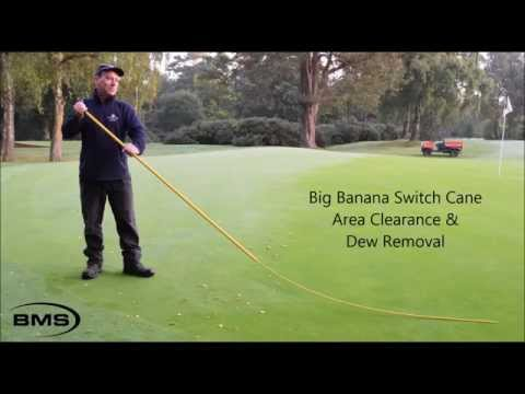 BMS - Dew Switch - Disease Control - Leaves & Worm Cast Removal