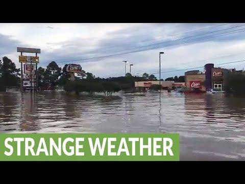 Boat ride through Louisiana streets captures extreme magnitude of flood