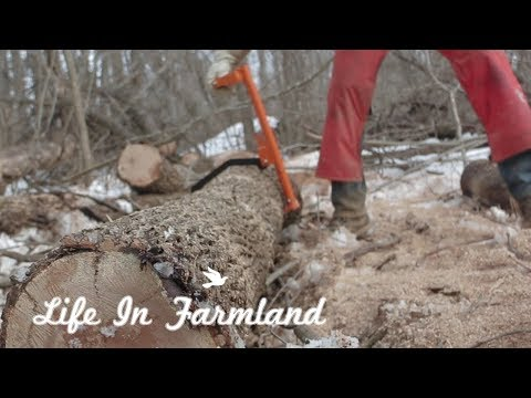This Firewood Rack Saved The Week