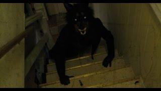 The Devil In The Basement Scare Prank!