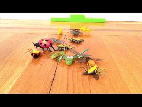 Bug battle!/pixelpandas.org