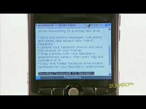 How to Install Applications on a BlackBerry For Dummies