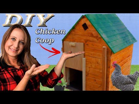 DIY Medium Sized Backyard Chicken Coop - Simple & Easy