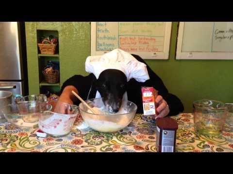 DOG BAKING CAKE