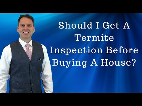 Should I Get A Termite Inspection Before Buying a House