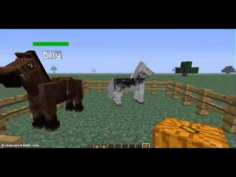 Minecraft| Mo Creatures| Mo' Creatures Horse Breeds with Vanilla MC Horse!