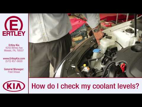 How to check your Coolant Level