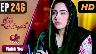 Drama | Kambakht Tanno - Episode 246 | Aplus ᴴᴰ Dramas | Tanvir Jamal, Sadaf Ashaan