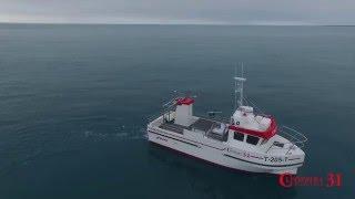 JÓRUNN B - Cleopatra Fisherman 31
