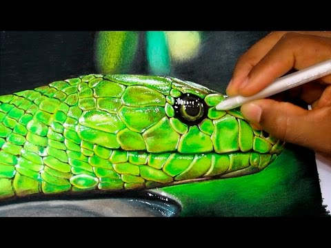 How to Draw a Realistic Snake | Time Lapse