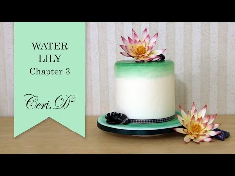 Water Lily #3 | River Stones