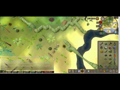 Runescape-Season's- Habitat track-trap
