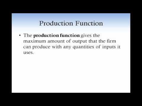 Producer_Theory_1