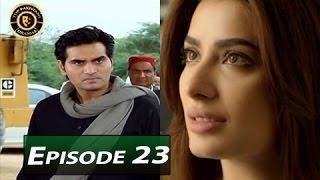 Dil Lagi Episode 23 - ARY Digital - Top Pakistani Dramas