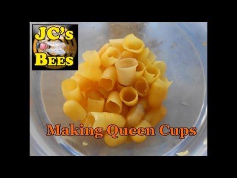 Making Wax Queen Cups For Queen Rearing