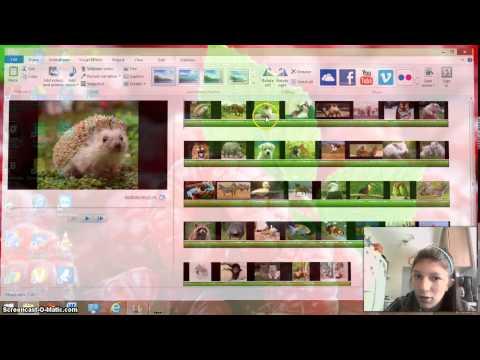 How to make a flip-gram on Windows Movie Maker