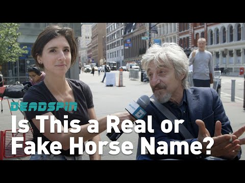Woman on the Street: Is This a Real or Fake Horse Name?