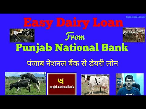 How to  Get Dairy Loan from Punjab National Bank | Easy Dairy loan from PNB