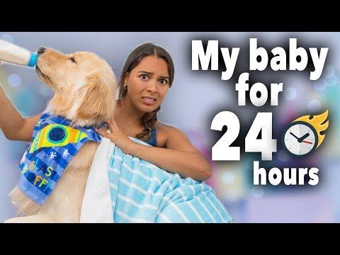 24 Hours Treating My Dog Like a Baby (cute!)