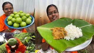 காட்டில் பறித்து சமைத்த பச்சை தக்காளி பச்சடி / Fresh Green Tomato Pachadi / Tastiest Village Cooking