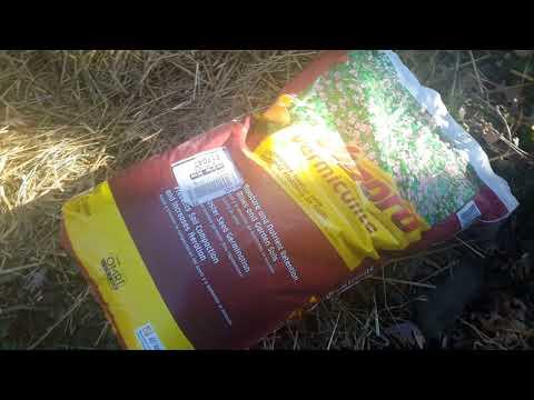 Home Hydrangea propagation vermiculite on sale 1/26/18
