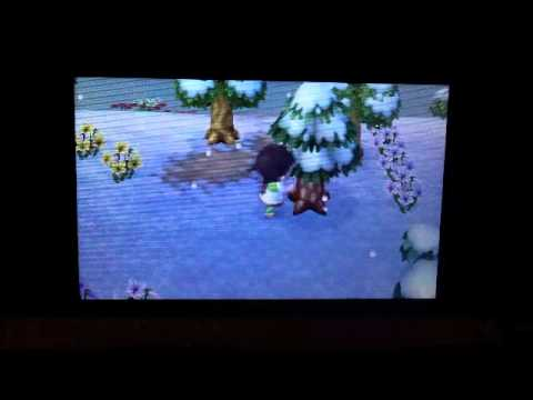 How to catch Bees in Animal Crossing New Leaf
