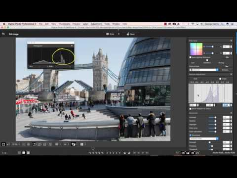 Canon Digital Photo Professional Video Tutorials - 3 Levels and curves