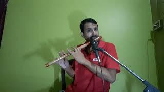 pankh hote toh ud aati re (flute cover)