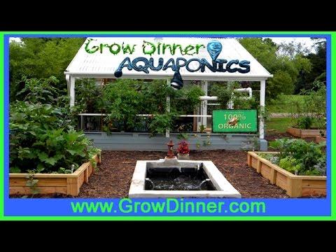 Learn Aquaponics to Grow Fish and Veggies!
