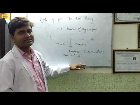 Role of Blood pH Level in Our Body