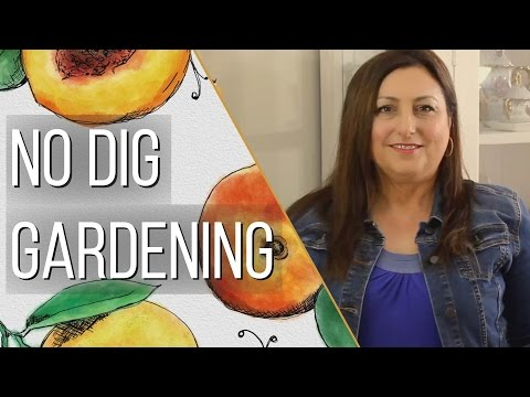 Preparing No Dig Raised Garden Beds - Compost as You Grow - Gardening Tips