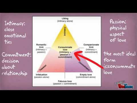 Interpersonal Relationships and Skills