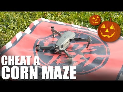 How to Cheat a Corn Maze | Flite Test