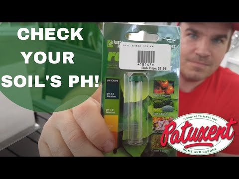 Check Your Soil's pH!