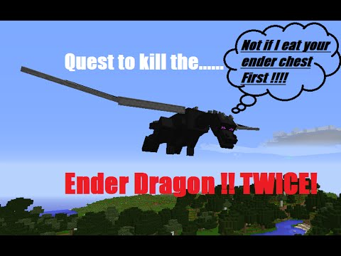 Defeat the Ender Dragon