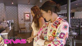 Brie Bella tries to help Nikki